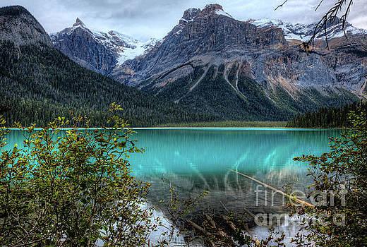Wayne Moran - Reflections Emerald Lake Yoho National Park British Columbia Canada