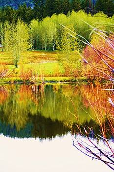 Reflections for Aspens by Russell  Barton
