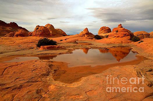 Adam Jewell - Reflections In A Desolate Landscape