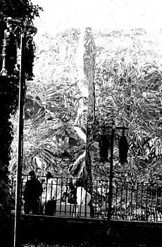 Reflections in Central Park by Oksana Pelts