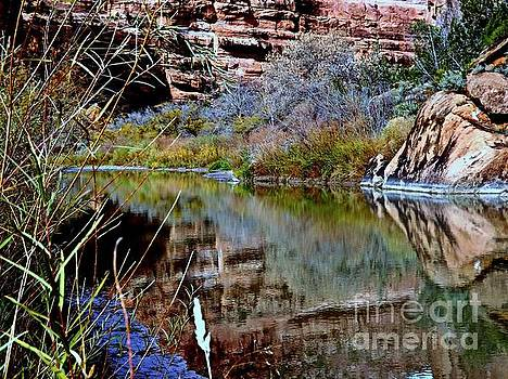 Reflections in Desert River Canyon by Annie Gibbons