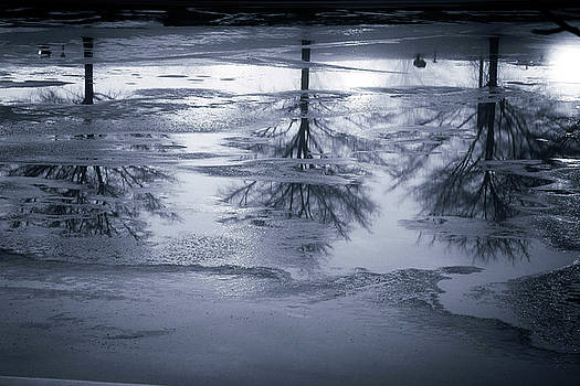 Reflections in Ice by Jackie Novak