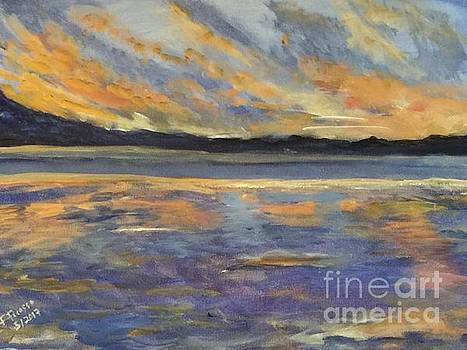 Reflections in Orange  by Frankie Picasso