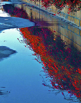 Reflections in red by Mary Attard