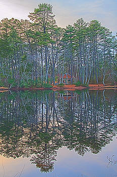 Reflections in the Pines by Beth Sawickie