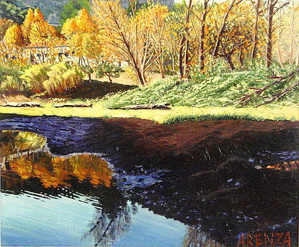 Reflections In The River Anoia by Juan Jose Abenza