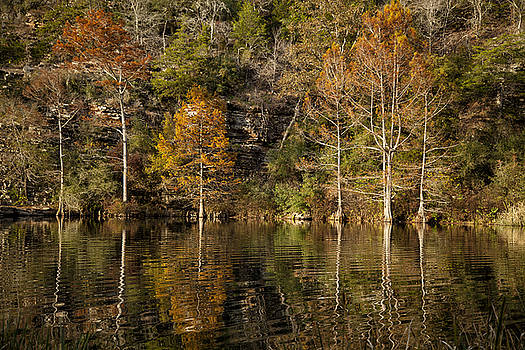 Reflections of Autumn by Katherine Worley