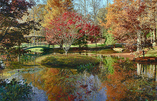 Reflections of Autumn by Nena Pratt