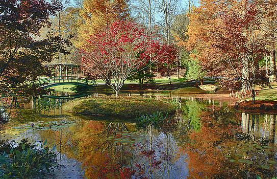 Reflections of Autumn by Nena Pratt