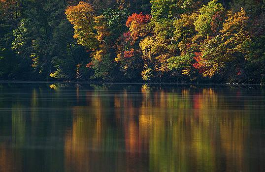 Karol Livote - Reflections of Colors
