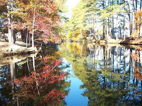 Reflections of Indian Summer by Janet Pugh