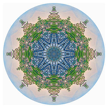 Reflections of Life Mandala 2 by Beth Sawickie