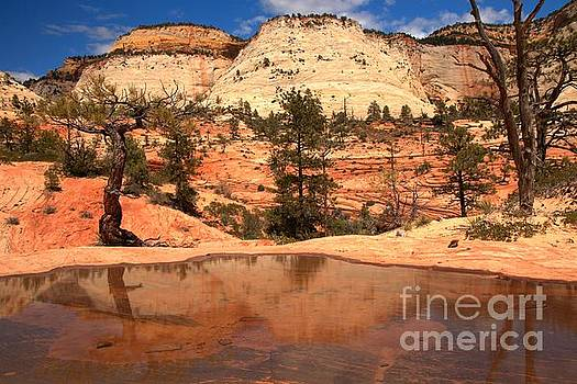 Adam Jewell - Reflections Of Navajo Sandstone