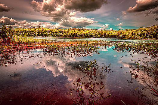 Reflections of Summer Past by Bob Orsillo