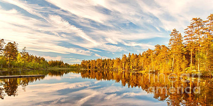 Reflections of trees in a lake in Smaland, Sweden by Martin Bergsma