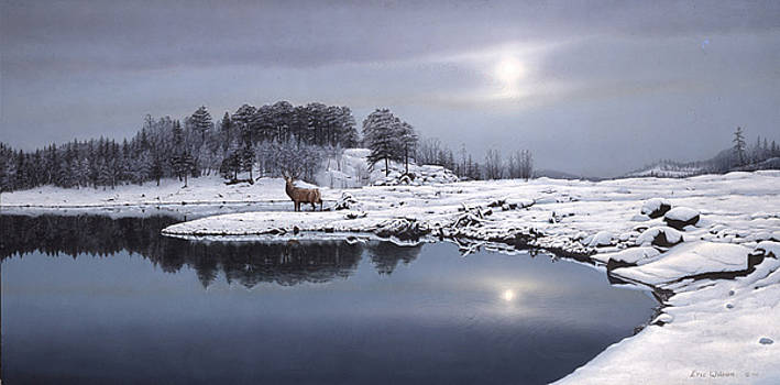 Reflections of winter by Eric Wilson