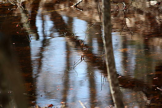 Annie Babineau - reflections on spring flooding