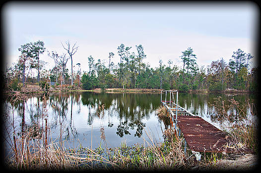 Reflections on the lake by Bill Perry