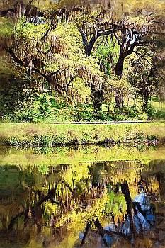 DONNA BENTLEY - Reflective Live Oaks