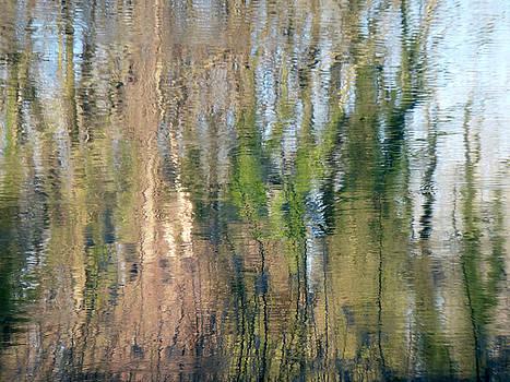 Marc Philippe Joly - reflet rhodanien pastel 1