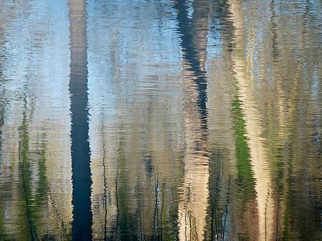 Marc Philippe Joly - reflet rhodanien pastel 2