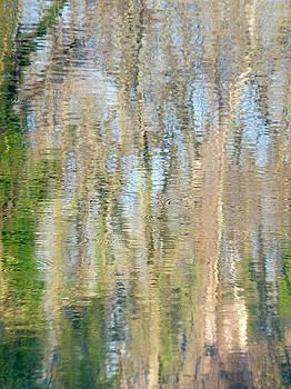 Marc Philippe Joly - reflet rhodanien pastel 3