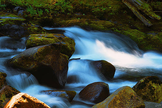 Refreshing Flow by Dee Browning