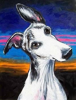 Reggie At Sunset by Billie Mann