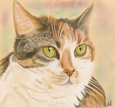 Regina the cat by Elena Malec