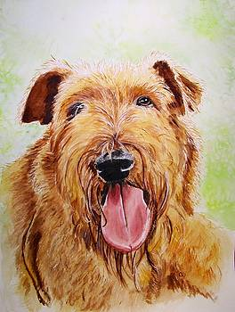 Reilly, Irish Terrier by Carol Blackhurst