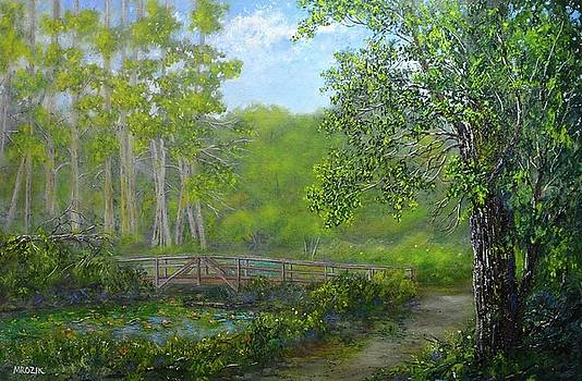 Reinsteinwoods Park by Michael Mrozik