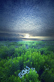 Rejoice For Your Soul Is Alive by Phil Koch