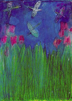 Lydia L Kramer - Relampagos Fireflies