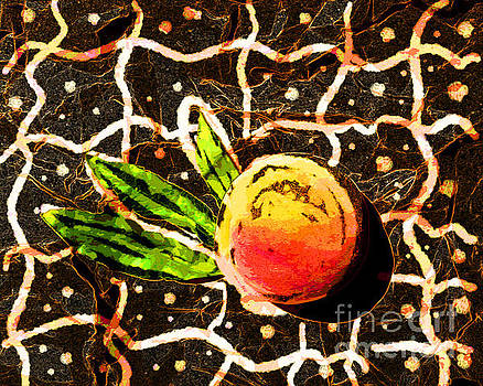 Relative vision of a peach by Anna Sofia