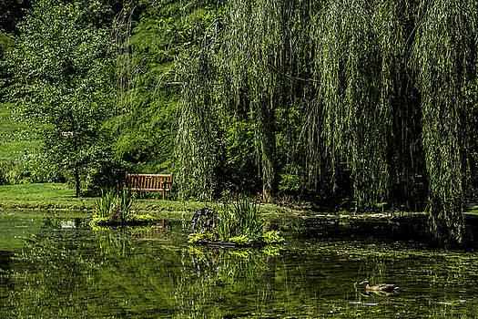 Allen Nice-Webb - Relax by Pond