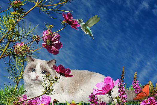 Relaxing by Cynthia Leaphart