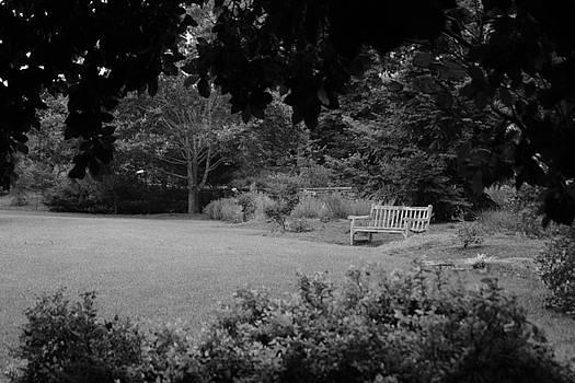 Angela Hansen - Relaxing in the Garden