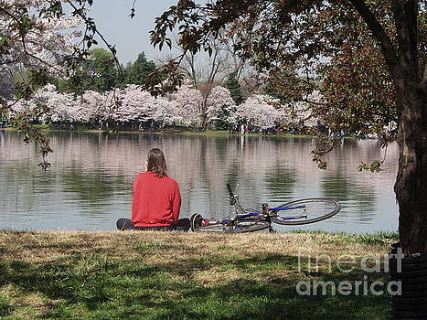 Relaxing Under Cherry Blossoms by April Sims