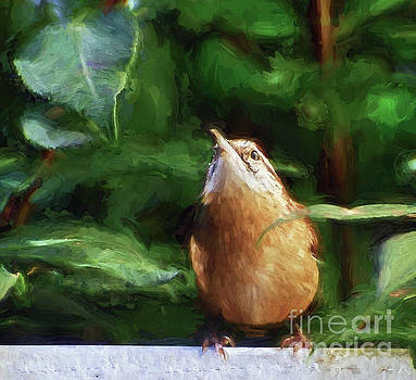 Remain Hopeful - Carolina Wren by Kerri Farley