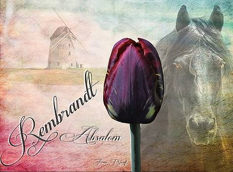 Rembrandt Absalom  by Fran J Scott
