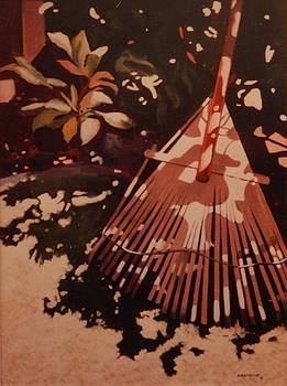 Remember a Rake?                 by Catherine Robertson