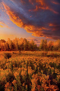 Remember Everything by Phil Koch