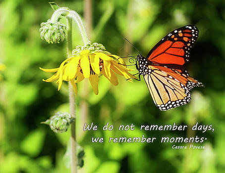 Remember Moments by Christina Durity