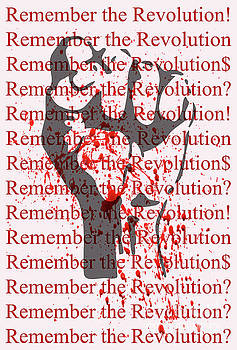 remember the Revolution by David Perry Lawrence