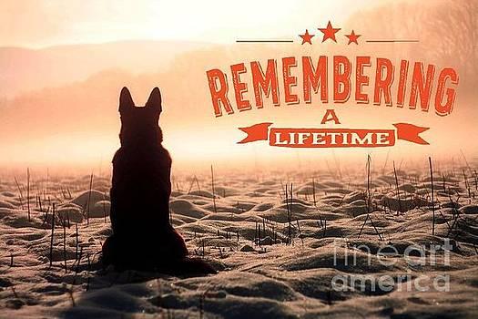 Kathy Tarochione - Remembering a Lifetime
