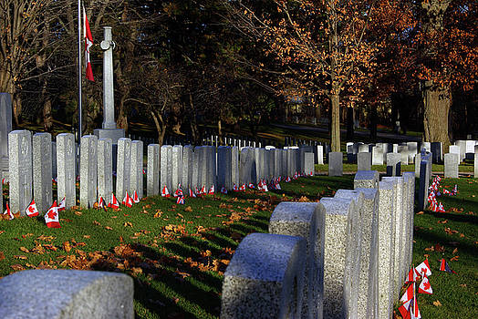 Remembrance Day Military Cemetery Flags by Paul Wash