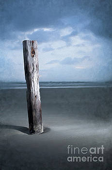 Dan Carmichael - Remnant of the Past on Outer Banks AP