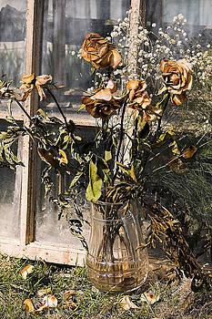 Linda McRae - Remnants of the Past