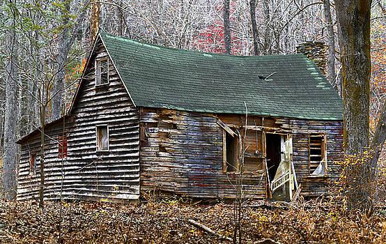 Remnants of the Past by Nena Pratt