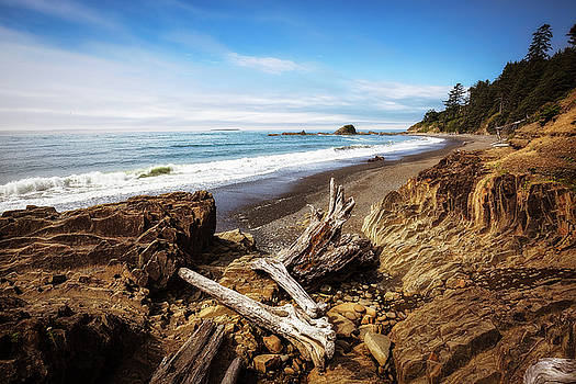 Remnants - Log Washed Up on Shore of Washington State Beach by Sean Ramsey